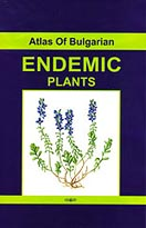 Atlas Endemic Plants